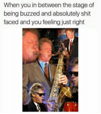 Memes, 🤖, and Hmu: When you in between the stage of  being buzzed and absolutely shit  faced and you feeling just right HMU Friday night vibes feelin gooooooooooooood 🍷🍹🍷(@cabbagecatmemes)