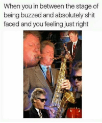Memes, 🤖, and Buzz: When you in between the stage of  being buzzed and absolutely shit  faced and you feeling just right Gotta love that feeling (@cabbagecatmemes)