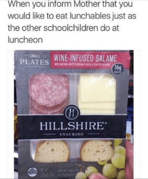 Ted, Wine, and Lunchables: When you inform Mother that you  would like to eat lunchables just as  the other schoolchildren do at  luncheon  PLATES WINE-INFUSED SALAME  16g  SMALL  WITH NATURAL ITE CHEDOAR CHEESE &TOAS TED ROUNDS  HILLSHIRE  SNACKING  NET WT  SERV SGSEST  LTS R R2097