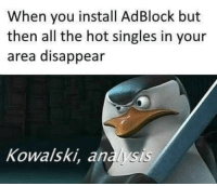 Memes, Singles, and All The: When you install AdBlock but  then all the hot singles in your  area disappear  Kowalski, analysis Kowalski memes