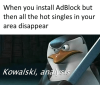 Weird, Singles, and All The: When you install AdBlock but  then all the hot singles in your  area disappealr  Kowalski, analysis Weird how it do that