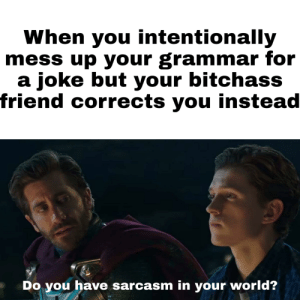 Stfu, World, and Dank Memes: When you intentionally  mess up your grammar for  a joke but your bitchass  friend corrects you instead  Do you have sarcasm in your world? Stfu