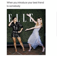 Best Friend, Crazy, and Dank: When you introduce your best friend  to somebody Tag your friends Follow @bitchy.code for more🤗 - - - love memesdaily Relatable dank girl Memes Hoodjokes Hilarious Comedy Hoodhumor Zerochill Jokes Funny Kanywest Kimkardashian litasf Kyliejenner Justinbieber Squad Crazy Omg Accurate Kardashians Epic bieber Photooftheday Tagsomeone trump rap drake