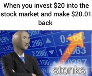 Stonk face: When you invest $20 into the  stock market and make $20.01  back  0.9%  0.12%  @heckoffsup eme  0.168  .286  2.286 14563  156 0287  stonks Stonk face