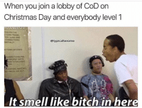 Bitch, Christmas, and Facts: When you join a lobby of CoD on  Christmas Day and everybody level 1  @typicalterome  It smell like bitch in here Facts
