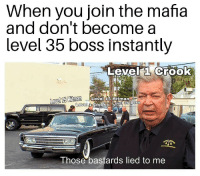 me irl: When you join the mafia  and don't become a  level 35 boss Instantly  Level a Crook  avel 15  Hitman Level 15 Hitman  Level  Those bastards lied to me me irl
