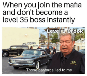 me irl by hexatIoist MORE MEMES: When you join the mafia  and don't become a  level 35 boss Instantly  Level a Crook  avel 15  Hitman Level 15 Hitman  Level  Those bastards lied to me me irl by hexatIoist MORE MEMES
