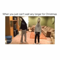 Christmas, Spirit, and You: When you just can't wait any longer for Christmas  @rilz @rilz.and.carlz just can't tame their Christmas spirit 🌲