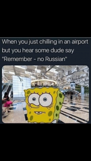 "hmm: When you just chilling in an airport  but you hear some dude say  ""Remember no Russian""  @kelpyg exe hmm"