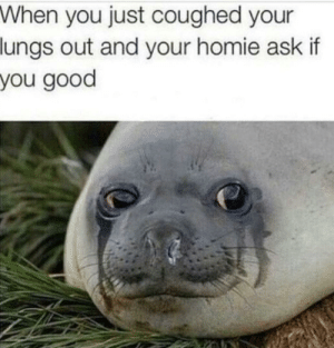 Dank, Homie, and Memes: When you just coughed your  lungs out and your homie ask if  you good Big mood by sad_optimist0 MORE MEMES