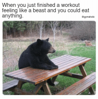 Fitness, Beast, and Motivation: When you just finished a workout  feeling like a beast and you could eat  anything  @gymaholic When you just finished a workout feeling like a beast  And you could eat anything.  More motivation: https://www.gymaholic.co  #fitness #motivation #gymaholic