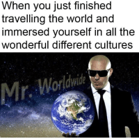 Friends, World, and All The: When you just finished  travelling the world and  immersed yourself in all the  wonderful different cultures <p>And hopefully make lots of friends along the way</p>