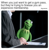 Gym, Fitness, and Motivation: When you just want to get a gym pass,  but they're trying to finesse you an  expensive membership.  @gymaholic When you just want to get a gym pass  But they're trying to finesse you an expensive membership.  More motivation: https://www.gymaholic.co  #fitness #motivation #gymaholic