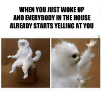 WHEN YOU JUST WOKE UP  AND EVERYBODY IN THE HOUSE  ALREADY STARTS YELLING AT YOU Don't you just hate it when this happens?