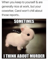 sml & murderous 🐰🔪follow @_taxo_ for more: When you keep to yourself & are  generally nice at work, but your  coworker, Carol won't chill about  those reports..  SOMETIMES  ® _Tax  I THINK ABOUT MURDER sml & murderous 🐰🔪follow @_taxo_ for more