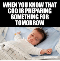 Memes, 🤖, and Codis: WHEN YOU KNOW THAT  CODIS PREPARING  SOMETHING FOR  TOMORROW  @IMSOBLESSEDDAILY 💤💤💤💚👍