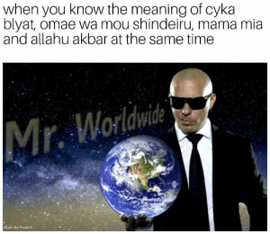Stay away from me monolinguals😎 by retarded_bandicoot FOLLOW 4 MORE MEMES.: when you know the meaning of cyka  blyat, omae wa mou shindeiru, mama mia  and allahu akbar at the same time  Worldwide  Mr.  Made By Paula K Stay away from me monolinguals😎 by retarded_bandicoot FOLLOW 4 MORE MEMES.