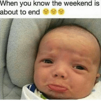 Comeback!!!!! 😭😭😭😂 meme: When you know the weekend is  about to end Comeback!!!!! 😭😭😭😂 meme