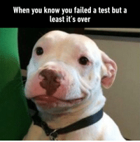 Dank, Test, and 🤖: When you know you failed a test but a  least it's over I made that exact same face after my last exam.