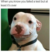 Test, You, and When You: When you know you failed a test but at  least it's over