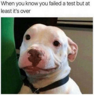 Better luck next time: When you know you failed a test but at  least it's over Better luck next time