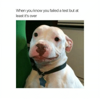 Should I be sad or happy? Why not both! (@hilarious.ted): When you know you failed a test but at  least it's over Should I be sad or happy? Why not both! (@hilarious.ted)