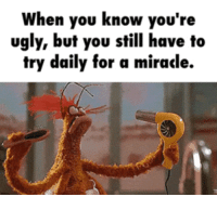 Club, Tumblr, and Ugly: When you know you're  ugly, but you still have to  try daily tor a miracle. laughoutloud-club:  I'm Ugly And I Don't Know Why