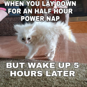meirl: WHEN YOU LAY DOWN  FOR AN HALF HOUR  POWER NAP  BUT WAKE UP 5  HOURS LATER  osal meirl