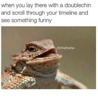 hhhehehehe: when you lay there with a doublechin  and scroll through your timeline and  see something funny  hhhehehe hhhehehehe