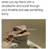Hehehehe 😆😆 lol lmao lmfao funny hilarious hysterical thatmomentwhen thatfaceyoumake joke jokes meme memes picture pictures true facts funnyjoke funnymeme funnyjokes funnymemes funnyposts funnypicture funnypictures toofunny tootrue doublechin: when you lay there with a  doublechin and scroll through  your timeline and see something  funny  hhhehehe Hehehehe 😆😆 lol lmao lmfao funny hilarious hysterical thatmomentwhen thatfaceyoumake joke jokes meme memes picture pictures true facts funnyjoke funnymeme funnyjokes funnymemes funnyposts funnypicture funnypictures toofunny tootrue doublechin
