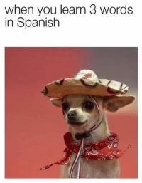 Spanish: when you learn 3 words  in Spanish