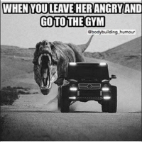 Goto, Humour, and Gyms: WHEN YOU LEAVE HERANGRYAND  GOTO THE GYM  @bodybuilding humour I'm outta here.