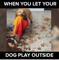 As long as the pup had fun! #itsviral: WHEN YOU LET YOUR  DOG PLAY OUTSIDE As long as the pup had fun! #itsviral