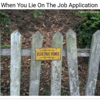 Memes, 🤖, and Mw2: When You Lie On The Job Application  @Kevin The Kiddd  ELECTRIC FENDE Yep * 😏Follow if you're new😏 * 👇Tag some homies👇 * ❤Leave a like for Dank Memes❤ * Second meme acc: @cptmemes * Don't mind these 👇👇 Memes DankMemes Videos DankVideos RelatableMemes RelatableVideos Funny FunnyMemes memesdailybestmemesdaily boii Codmemes teacher math Meme InfiniteWarfare Gaming gta5 bo2 IW mw2 Xbox Ps4 Psn Games VideoGames Comedy Treyarch sidemen sdmn