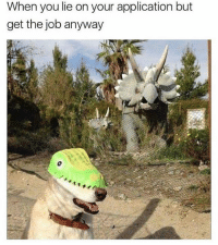 Funny, Memes, and 🤖: When you lie on your application but  get the job anyway This is so @funny 😂