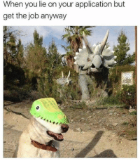 Dank, 🤖, and Job: When you lie on your application but  get the job anyway