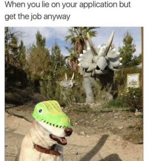 Dank, Memes, and Target: When you lie on your application but  get the job anyway Good boi by Deyuu12 MORE MEMES