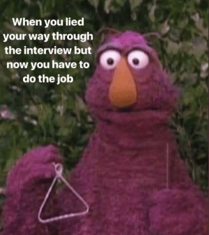 The Interview, Irl, and Me IRL: When you lied  your way through  the interview but  now you have to  do the job me irl