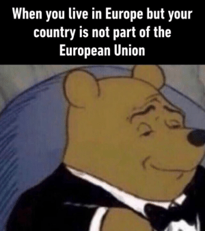 Dank, Europe, and Live: When you live in Europe but your  country is not part of the  European Union *laughs in Swiss* #Article13