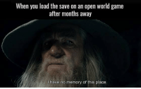 Exactly like this.: When you load the save on an open world game  after months away  have no memory of this place. Exactly like this.