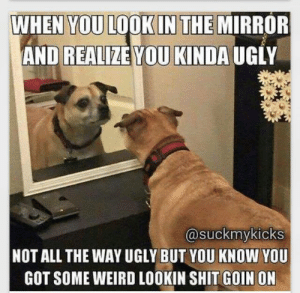 Shit, Ugly, and Weird: WHEN YOU LOOK IN THE MIRROR  AND REALIZE YOU KINDA UGLY  @suckmykicks  NOT ALL THE WAY UGLY BUT YOU KNOW YOU  GOT SOME WEIRD LOOKIN SHIT GOIN ON