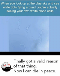 Memes, 🤖, and Cell: When you look up at the blue sky and see  white dots flying around, you're actually  seeing your own white blood cells  Finally got a valid reason  of that thing  Now I can die in peace