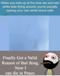 Memes, 🤖, and Cell: When you look up at the blue sky and see  white dots flying around, you're actually  seeing your own white blood cells  Finally Got a Valid  Reason of that thing.  Now I  can die in Peace Twitter: BLB247 Snapchat : BELIKEBRO.COM belikebro sarcasm Follow @be.like.bro