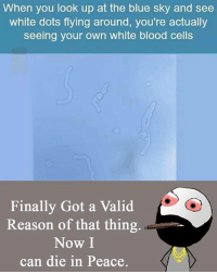 Memes, Blue, and White: When you look up at the blue sky and see  white dots flying around, you're actually  seeing your own white blood cells  Finally Got a valid  Reason of that thing  Now I  can die in Peace