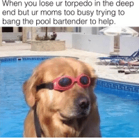 Deep, The Deep, and Bang: When you lose ur torpedo in the deep  end but ur moms too busy trying to  bang the pool bartender to help