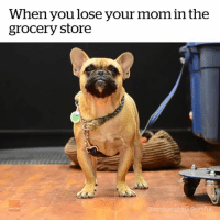 Mom, You, and Store: When you lose your mom in the  grocery store  storyhat. MOM!!!!! 😩