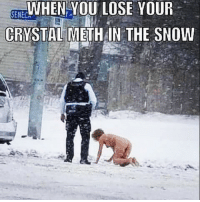 Snow: WHEN YOU LOSE YOUR  SENECS  CRYSTAL METH IN THE SNOW