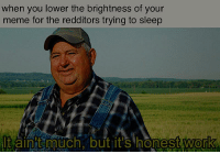 Meme, Work, and Sleep: when you lower the brightness of your  meme for the redditors trying to sleep  t ainit much. but it's honest  work  0 Fell asleep making this