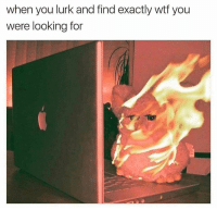 Funny, Lurking, and Looking: when you lurk and find exactly wtf you  were looking for omg