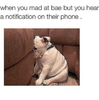 Y'all know this is true 😉 ratchetmemes ratchet memes meme funny: when you mad at bae but you hear  a notification on their phone Y'all know this is true 😉 ratchetmemes ratchet memes meme funny